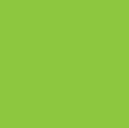big-green-icon
